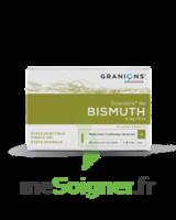 GRANIONS DE BISMUTH 2 mg/2 ml S buv 10Amp/2ml à Saint-Pierre-des-Corps