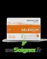 GRANIONS DE SELENIUM 0,96 mg/2 ml S buv 30Amp/2ml à Saint-Pierre-des-Corps
