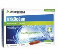 Arkocean Magnesium Marin Solution buvable caramel 20 Ampoules/10ml à Saint-Pierre-des-Corps