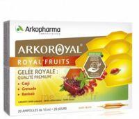 Arkoroyal Royal'Fruits Gelée royale Goji Grenade Baobab Solution buvable 20 Ampoules/10ml à Saint-Pierre-des-Corps