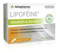 Lipofeine Graisse et Sucres Gélules B/60 à Saint-Pierre-des-Corps