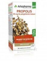 Arkogélules Propolis Bio Gélules Fl/45 à Saint-Pierre-des-Corps