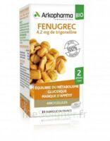 Arkogélules Fenugrec Bio Gélules Fl/40 à Saint-Pierre-des-Corps