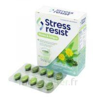 Stress Resist Comprimés Stress & fatigue B/30 à Saint-Pierre-des-Corps