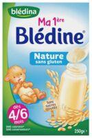 Blédine Ma 1ère blédine nature 250g à Saint-Pierre-des-Corps