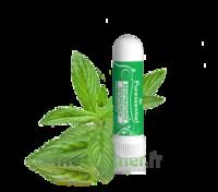 Puressentiel Respiratoire Inhaleur Respiratoire aux 19 Huiles Essentielles - 1 ml à Saint-Pierre-des-Corps