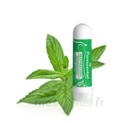 PURESSENTIEL RESPIRATOIRE Inhalation nasal 19 huiles essentielles à Saint-Pierre-des-Corps