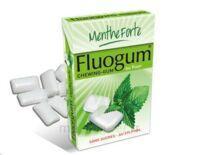 FLUOGUM Chew gum dragée menthe forte à Saint-Pierre-des-Corps