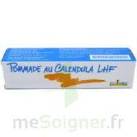 Calendula Lhf Pom T/20g à Saint-Pierre-des-Corps