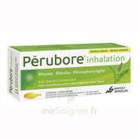Perubore Caps Inhalation Par Vapeur Inhalation Plq/15 à Saint-Pierre-des-Corps