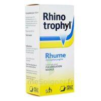 RHINOTROPHYL Solution pour pulvérisation nasale 1Fl/12ml à Saint-Pierre-des-Corps
