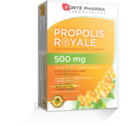 Forte Pharma Propolis 500 Solution buvable 20 Ampoules/10ml à Saint-Pierre-des-Corps