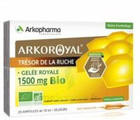 Arkoroyal Gelée Royale Bio 1500 Mg Solution Buvable 20 Ampoules/10ml à Saint-Pierre-des-Corps