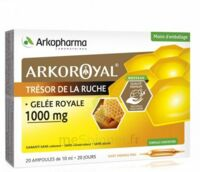 Arkoroyal Gelée royale 1000 mg Solution buvable 20 Ampoules/10ml à Saint-Pierre-des-Corps