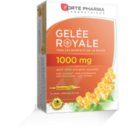 Forte Pharma Gelée Royale 1000 Mg Solution Buvable 20 Ampoules/10ml à Saint-Pierre-des-Corps