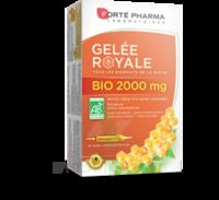 Forte Pharma Gelée royale bio 2000 mg Solution buvable 20 Ampoules/15ml à Saint-Pierre-des-Corps