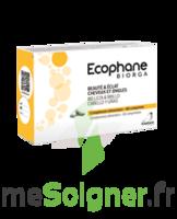 Ecophane Comprimés beauté & éclat cheveux et ongles 3*B/60 à Saint-Pierre-des-Corps
