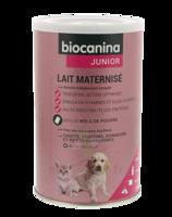 Biocanina Lait poudre maternisé B/400g à Saint-Pierre-des-Corps