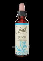 Fleurs De Bach® Original Beech - 20 Ml à Saint-Pierre-des-Corps