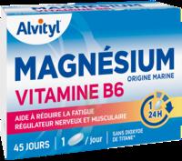 Govital Magnésium Vitamine B6 Comprimés B/45 à Saint-Pierre-des-Corps