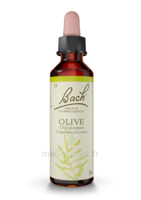 Fleurs de Bach® Original Olive - 20 ml à Saint-Pierre-des-Corps