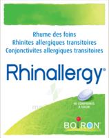 Boiron Rhinallergy Comprimés B/40 à Saint-Pierre-des-Corps