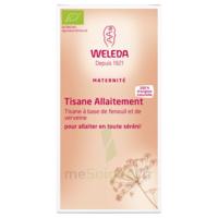 Weleda Tisane Allaitement 2x20g à Saint-Pierre-des-Corps