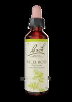 Fleurs de Bach® Original Wild Rose - 20 ml à Saint-Pierre-des-Corps
