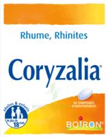 Boiron Coryzalia Comprimés Orodispersibles à Saint-Pierre-des-Corps