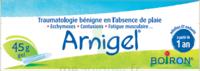Boiron Arnigel Gel T/45g à Saint-Pierre-des-Corps