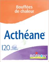 Boiron Acthéane Comprimés B/120 à Saint-Pierre-des-Corps